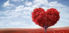 Amoureuse: comment savoir que l'on est amoureux