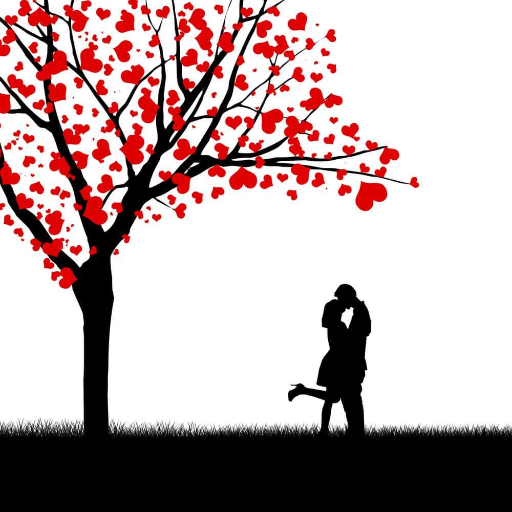 Tomber amoureux à la première rencontre